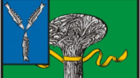 Снятие ограничений в Новоузенском районе возможно в ближайшее время