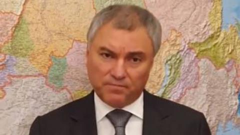 Вячеслав Володин: Когда дерево уничтожается, что будет взамен?