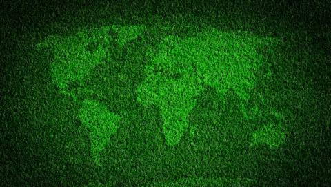 Благотворительная онлайн-викторина Сбербанка ко Дню эколога собрала игроков из 20 регионов России