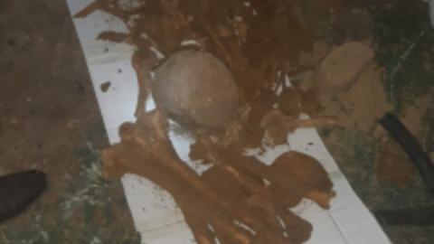 В поселке под Новоузенском при прокладке труб нашли человеческие кости