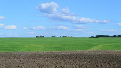 У хвалынского фермера отобрали гектар земли из-за чиновников