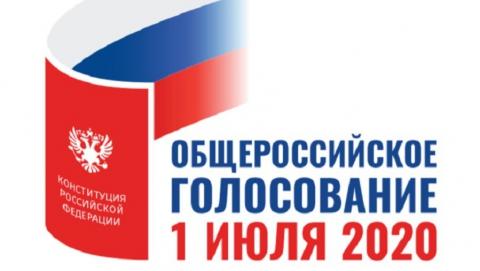 Заявление о голосовании на дому на общероссийском голосовании по поправкам в Конституцию можно подать до 17.00 1 июля
