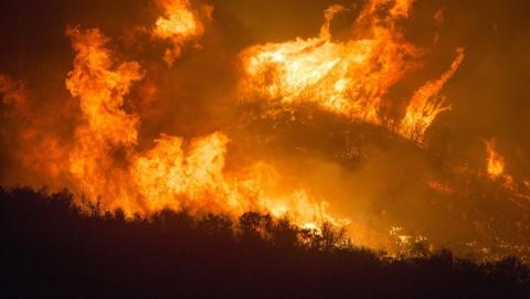 Чрезвычайный уровень пожароопасности распространится по всему региону к концу недели