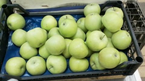 Яблоки в Саратове стоят дороже лимонов и грейпфрутов