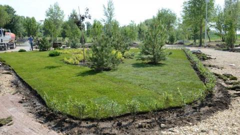 4000 деревьев и кустарников высадит Балаковская АЭС в новом городском ландшафтном парке