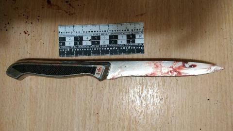 Саратовец зарезал собутыльника за обвинения в жульничестве | 18+