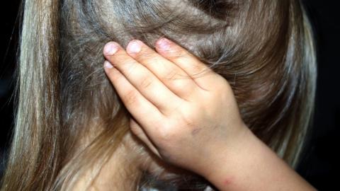 Суд вынес приговор растлителю малолетних