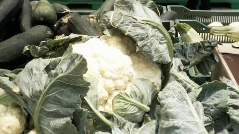 В Саратовской области опять растут цены на продукты