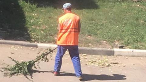 Дворник с «экологически чистой метлой» возмутил жителей дорогого района