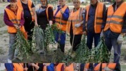 Дворники Ленинского района отстаивают самодельные метлы