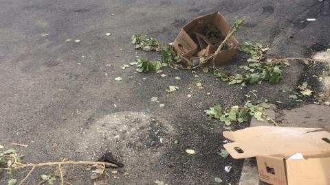 «Хотели ливневки?»: жители центра Саратова жалуются на дыру в асфальте