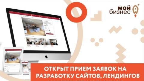 Саратовским предпринимателям оплатят половину стоимости работ по созданию сайта для компании