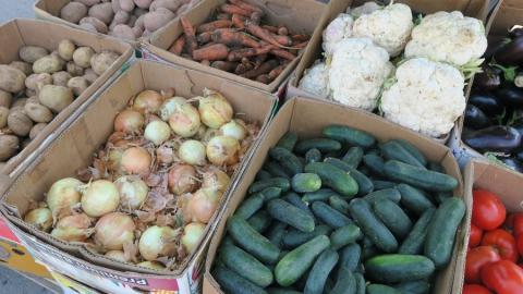 В субботу на ярмарках саратовцы смогут запастись мясом, овощами, молочными продуктами