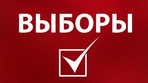В Саратовской области проходит 10 избирательных кампаний