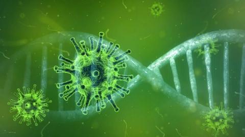 Названы даты второй волны коронавируса в России