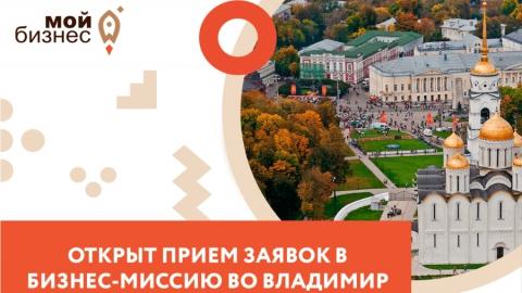 С бизнес-миссией во Владимир