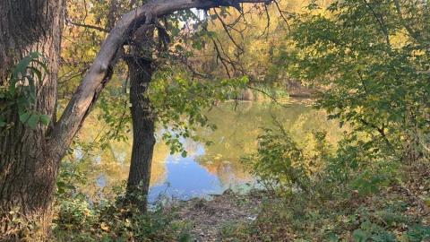Рыбак вытащил из воды тело женщины под Калининском