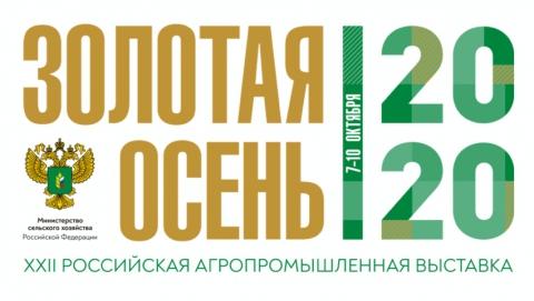 Победители выставки «Золотая осень 2020»