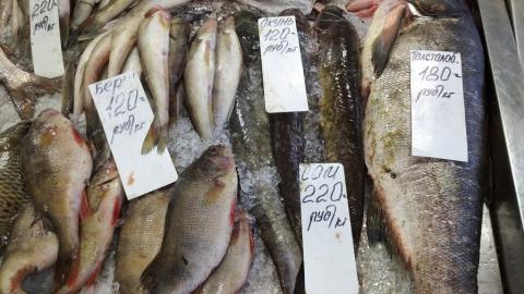 Саратовцам продавали рыбу с истекшим сроком годности