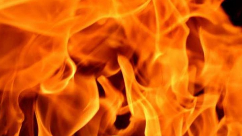 Два сарая и машина с прицепом сгорели в Энгельсском районе