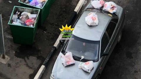 Саратовского автохама покарали мусором