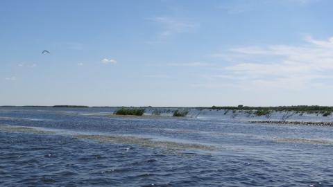 Четыре тысячи саратовцев поучаствовали в чистке волжского берега