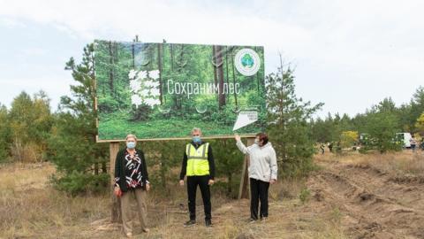 Акция по сохранению лесов проходит в Марксовском районе