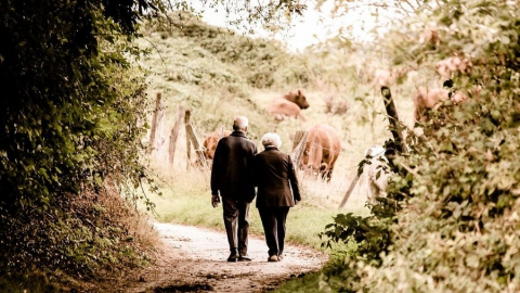 Госдума предлагает ввести пенсионные ранги