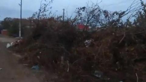 Балаковец жалуется на завалившую дом пенсионерки свалку | Видео