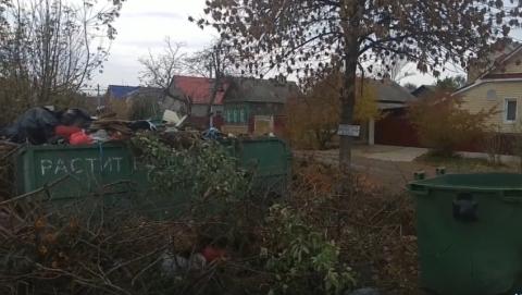 Балаковец рассказал о помойке, перегородившей тротуар | Видео