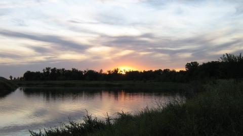 Расчистка водохранилища идет на реке Большой Узень