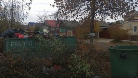 Чиновники пообещали убрать свалку после публикации Saratovnews
