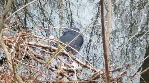 Пожилой житель Турковского района не вернулся с прогулки к пруду