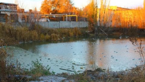 Ответственных за «мусорный» пруд в Заводском районе так и не нашли