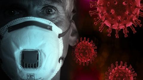 Губернатор поручил разработать электронную систему предоставления результатов тестов на коронавирус