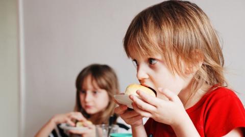 Саратовским школьникам не хватает рыбы, сыра, творога