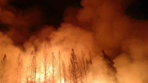 Сразу четыре постройки загорелись под Саратовом