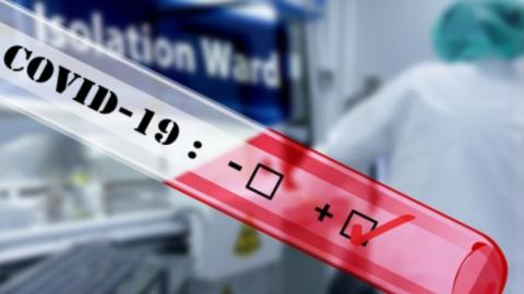 245 коронавирусных больных выявили за сутки