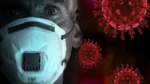 679 коронавирусных больных погибли от иных патологий
