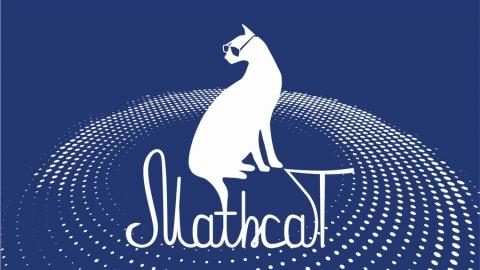 Флешмоб по математике MathCat