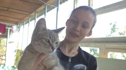Во всемирный день домашних животных в Саратове ищут волонтеров