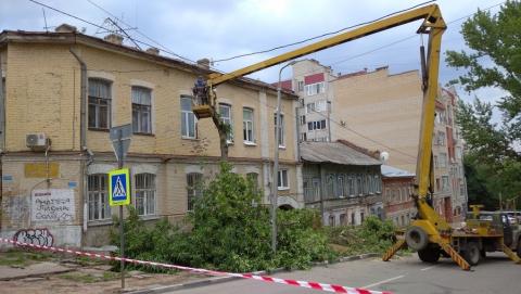 Улицы Саратова очистят от древесных отходов