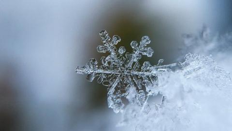 Легкая облачность и сильный мороз ожидают саратовцев