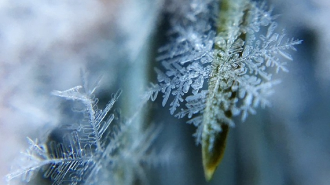 Штормовое предупреждение в Саратовской области. Морозы не отступают