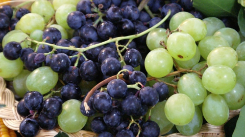 В Саратовскую область не пустили большую партию винограда