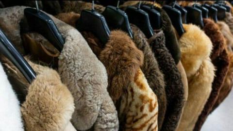 Новенькая шуба обошлась саратовчанке в потерю 34 тысяч рублей