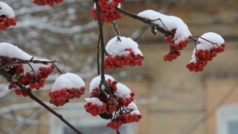 Выходной день в Саратове сопровождается легким морозом