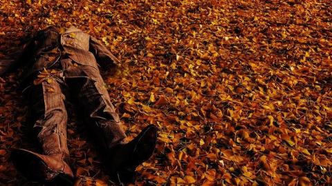 Дачник из Ленинского района нечаянно убил пожилого мужчину
