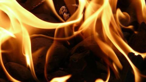 «Елочка» загорелась в Энгельсе: проводка была неисправна