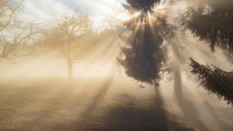 В Саратове туман и почти полный штиль